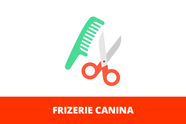 frizerie-canina
